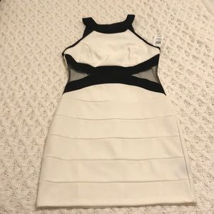 NWT Women's white and black dress
